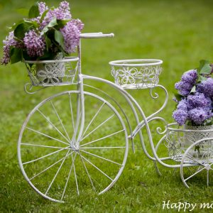 happy moments_bicycle (1)
