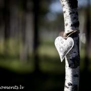 happy moments_heart deco (7)