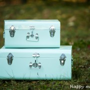 happy moments_ suitcase (1)