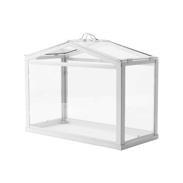 stikla-kaste